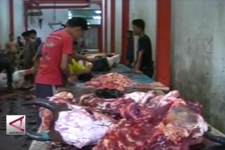 Pemotongan sapi di RPH Kendari naik 48%