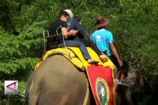Wisata Taman Safari yang selalu diminati pemudik