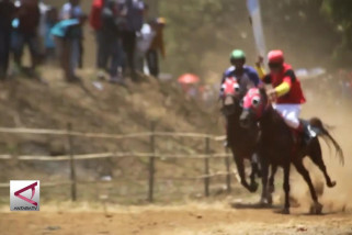 Adu ketangkasan pacuan kuda tradisional di Kuningan