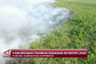 4 hari berjibaku padamkan kebakaran 400 Hektar lahan