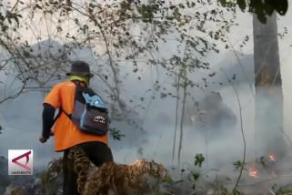 Kebakaran Hutan Gunung Ciremai meluas hingga 500 Ha