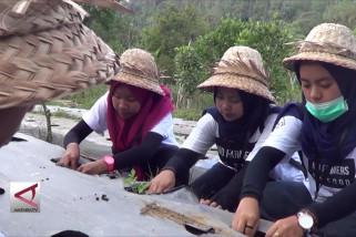 Edukasi mengenal usaha pertanian pelajar