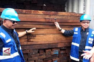 KLHK amankan ratusan kontainer kayu ilegal