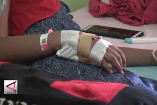 Demam berdarah di Jember, belasan pasien dirawat