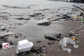 Menteri LHK bersihkan sampah di Pantai Pelabuhan Cirebon