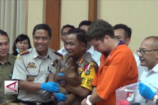 Warga Rusia ingin selundupkan orangutan lewat Bali