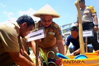 ANTARA TV - Gubernur Babel Tanam Sorgum di lahan Eks Tambang