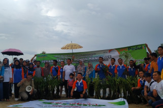 Antara TV - IPC Pangkalbalam Hijaukan Pantai Baskara