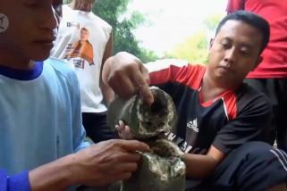 Warga Ngawi temukan tulang diduga fosil