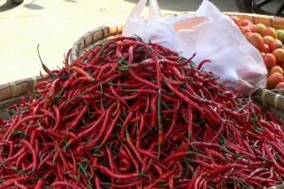 Harga cabai merah di Cilegon tinggi akibat kekurangan pasokan