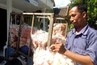 Puluhan tahun Menabung , penjual kerupuk keliling naik haji