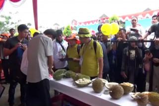 Pemerintah siapkan 200 hektar lahan untuk kembangkan durian lokal