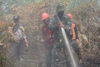 Satgas Karhutla Riau fokus pemadaman di wilayah selatan
