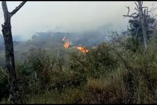 Gunung Ceremai terbakar, 61 pendaki dievakuasi