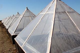 Petani garam di Cirebon gunakan teknik prisma