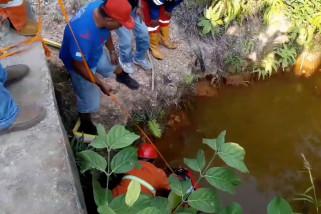 BPBD Balikpapan manfaatkan sumber air di sekitar hutan