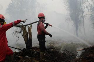 10 hektar lahan terbakar, warga diimbau mengungsi