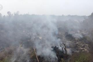 Guyuran hujan belum mampu padamkan api di lahan gambut
