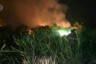 40 hektare lahan di pinggir Pekanbaru ludes terbakar