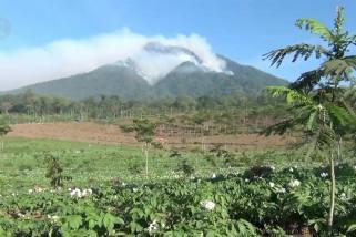 4 gunung di wilayah Sekar Kijang terbakar