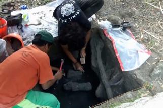 Arkeolog : Jawa dulu lautan