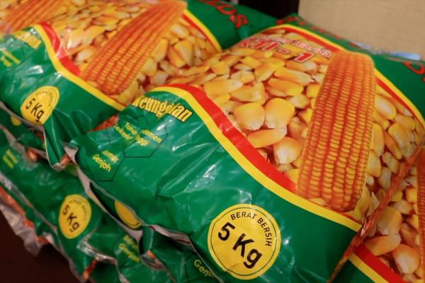 HKTI luncurkan produk benih jagung produksi NTB