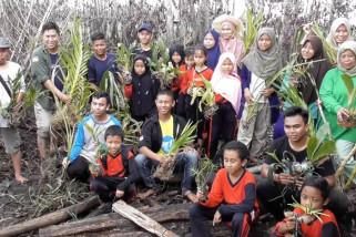 Pemulihan Pulau Anggrek Sungai Upang yang hangus terbakar