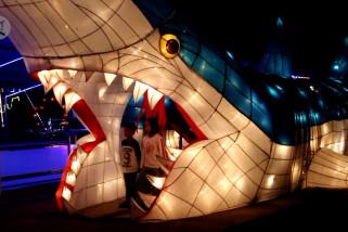 Merasakan sensasi dinosaurus dan hiu berpendar di Cirebon