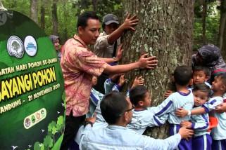Aksi peluk pohon di Hari Pohon Sedunia