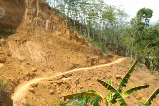 13 Kecamatan di Jember rawan longsor dan banjir bandang