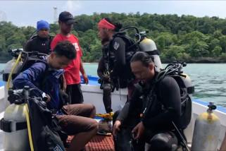 Mencari foto dan titik selam baru di bawah laut Maratua