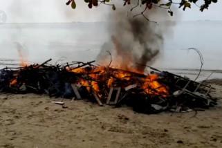 Membusuk di pantai Balikpapan, paus raksasa akhirnya dibakar