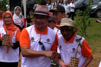 Ridwan Kamil & Tasya bagikan bibit pohon di Bandung Utara