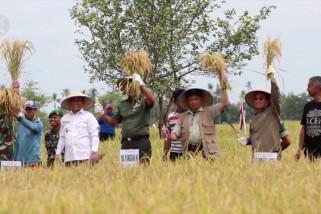 Memberi fasilitas lebih pada petani agar Aceh surplus padi