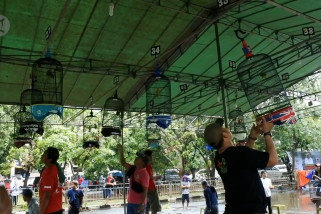 Festival Burung Berkicau Nusantara 2020