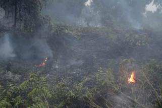 Gubernur Riau minta semua Kabupaten/Kota siaga penuh karhutla