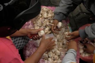 Pemprov Babel jamin stok bawang putih tidak terkontaminasi virus corona