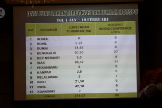 Pemprov Riau tetapkan status siaga darurat karhutla