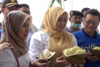 Adu unggul durian khas Pandeglang di Sub Terminal Cadasari