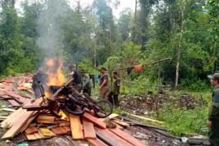 BBKSDA musnahkan 10 pondok pembalak liar di Hutan Giam Siak Kecil