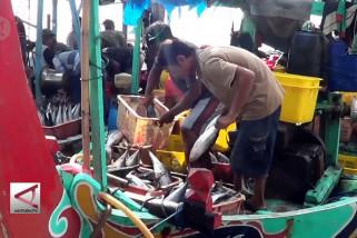 KKP ajukan anggaran Rp1,24 T untuk penguatan nelayan