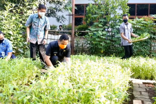 Pemanfaatan lahanterbuka untuk pertanian
