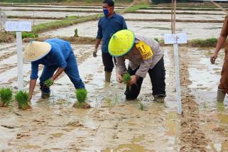 Polres Aceh Barat cetak sawah baru di lahan kosong