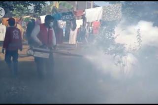 PMI Jember gencar lakukan fogging
