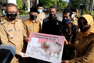 Gubernur Kalbar serahkan hewan kurban bantuan Presiden