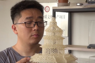 Seniman China ciptakan karya seni dengan butiran beras