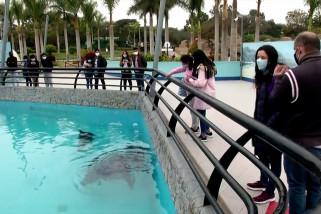 Bertamasya ke Taman Legenda di Lima