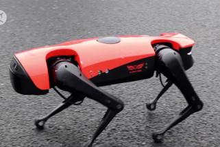 Berkenalan dengan AlphaDog, si anjing robotik cerdas