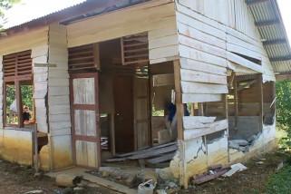 Kawanan gajah liar kembali merusak puluhan rumah dan kebun warga