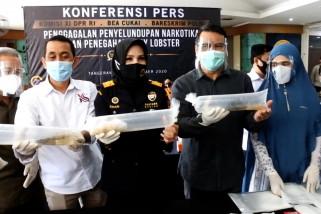 Bea Cukai gagalkan penyelundupan 1,2 juta benih lobster ke Vietnam